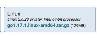 Download Go - Linux