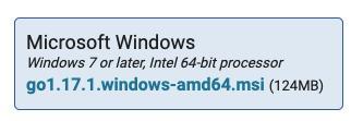 Download Go - Windows